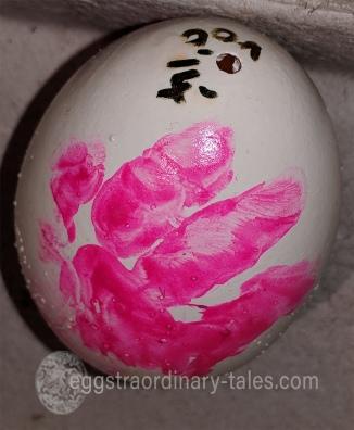 Tori-baby-egg2